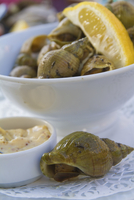 Whelks with mayonnaise