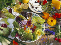 Mixed leaf salad with edible flowers, sheep's cheese with ol 22199075773| 写真素材・ストックフォト・画像・イラスト素材|アマナイメージズ