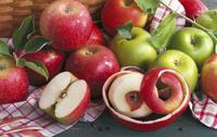 Red and green apples on a tea towel 22199075777  写真素材・ストックフォト・画像・イラスト素材 アマナイメージズ