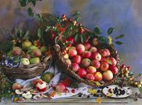 An autumnal arrangement of apples, crab apples, rowan berrie