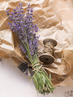A bunch of lavender on a creased piece of paper