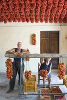 An old married couple preparing pomodorino piennolo del Vesuvio tomaotes for the winter season (Italy)