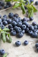 Bilberries and leaves 22199076986| 写真素材・ストックフォト・画像・イラスト素材|アマナイメージズ