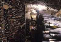 Bottles of aged wine in a wine cellar