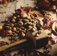 Assorted nuts with autumn leaves and a meat mallet