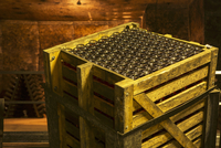 Fermentation according to the methode champenoise in a wine vault; a wooden crate of bottles