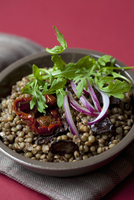 Lentil salad with sundried tomatoes, rocket and olives 22199078422| 写真素材・ストックフォト・画像・イラスト素材|アマナイメージズ