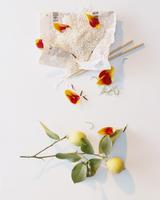 Rice, chopsticks, tulip petals and a lemon with twig 22199078515| 写真素材・ストックフォト・画像・イラスト素材|アマナイメージズ
