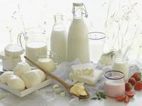 Various dairy products 22199078582| 写真素材・ストックフォト・画像・イラスト素材|アマナイメージズ