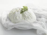 Soft (fresh) cheese 22199078587| 写真素材・ストックフォト・画像・イラスト素材|アマナイメージズ