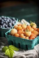 Fresh Golden Rasperries 22199078623| 写真素材・ストックフォト・画像・イラスト素材|アマナイメージズ