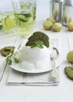 Coconut pudding with woodruff biscuits 22199079075| 写真素材・ストックフォト・画像・イラスト素材|アマナイメージズ