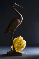 A wooden bird with uncooked tagliatelle 22199079103| 写真素材・ストックフォト・画像・イラスト素材|アマナイメージズ