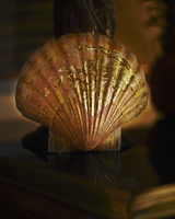 Scallop shell with gold leaf