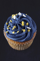 A cupcake decorated with blue icing and stars