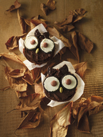 Owl cupcakes surrounded by autumn leaves