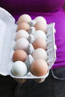 Farm Fresh Multi-Color Eggs 22199080739| 写真素材・ストックフォト・画像・イラスト素材|アマナイメージズ