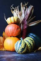 Halloween pumpkins, gourds and indian corn 22199081667| 写真素材・ストックフォト・画像・イラスト素材|アマナイメージズ