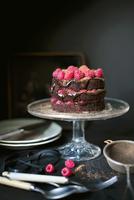 Dark chocolate and raspberry cake on a cake stand