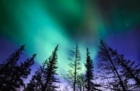 Aurora Borealis(Northern Lights), Churchill, Manitoba, Canad