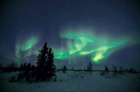 Northern Lights (Aurora borealis), Canada.