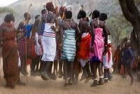 Samburu tribesman dancing to celebrate the mass circumcision 22206002803| 写真素材・ストックフォト・画像・イラスト素材|アマナイメージズ