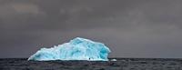 Adelie Penguins (Pygoscelis adeliae) on blue ice berg. Graha