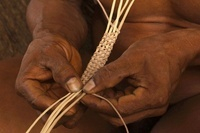 Huaorani Indian feather crown being made using feathers from