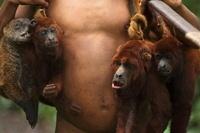 Huaorani Indian carrying hunted howler monkeys and coati. Ga