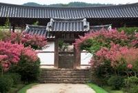 Andong Hahoe Village,Andong,Gyeongbuk,Korea