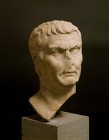 Head of Agrippa 22244001049| 写真素材・ストックフォト・画像・イラスト素材|アマナイメージズ