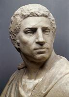 Brutus - detail (face)