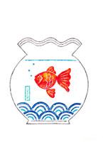 金魚鉢の金魚 イラスト 22257001388  写真素材・ストックフォト・画像・イラスト素材 アマナイメージズ