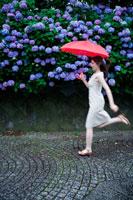 あじさいの花と傘を持ってジャンプする女性
