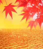 紅葉と水面CG