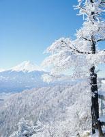 三ツ峠より望む富士山と樹氷
