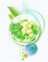 植物 CG