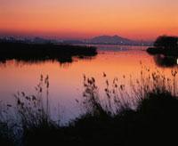 鳥屋野潟の夕景
