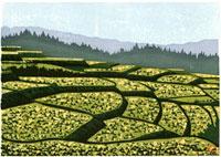 ふるさと風景版画の秋の棚田