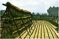 ふるさと風景版画の秋の田んぼ