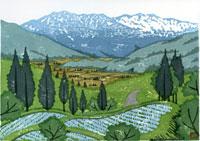 ふるさと風景版画の春の田んぼ 22276006026| 写真素材・ストックフォト・画像・イラスト素材|アマナイメージズ