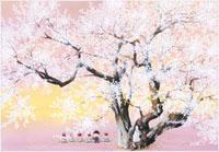 桜 22276006258| 写真素材・ストックフォト・画像・イラスト素材|アマナイメージズ
