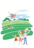旅行で茶畑を散策する家族