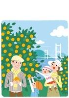 みかん畑と家族
