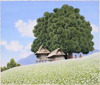 蕎麦畑の丘