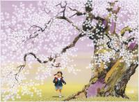 中曽根の権現桜一年生の春