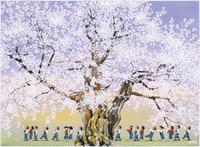 荘川桜 童の散歩