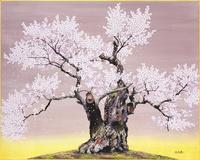 謙信の逆桜