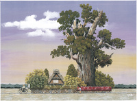 萬年杉のある家 22276007591| 写真素材・ストックフォト・画像・イラスト素材|アマナイメージズ