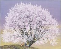 天王桜オオヤマザクラ